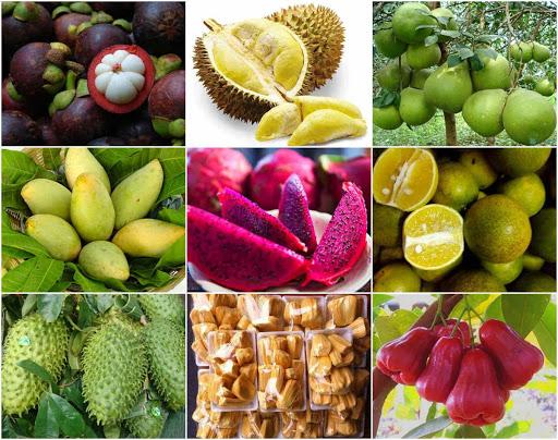 Nông sản Việt Nam xuất khẩu